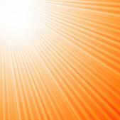 Sun rays background — Stock Vector