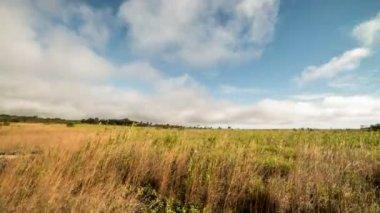 Kilauea Caldera Volcanoes National Park Time Lapse — Stock Video