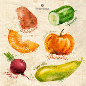 Vegetables. Vector format — Stockvector