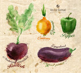 Vegetables. Vector format — Stock Vector