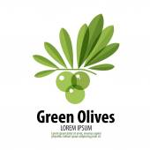 Green Olives vector logo design template. harvest or food icon. — Stock Vector