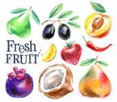 Gardening. fresh fruit on a white background. sketch — Stock Photo