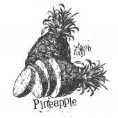Pineapple on a white background. sketch — Stock Photo