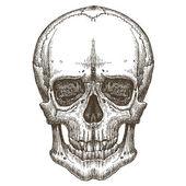Czaszka wektor logo szablon projektu. śmierci, choroby lub zombie ikona. — Wektor stockowy