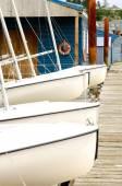 Barco a vela — Foto Stock