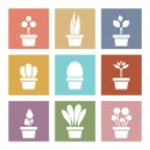 Set Of White Pot Plants Symbol Vector Illustration — Stock Vector #56021033