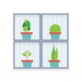 Flat Design Potted Plants In The Box Vector Illustrations — Stock Vector