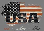 USA flag and map design — Stock Vector