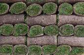 A pallet of freshly cut turf rolled and stacked ready for sale — Stock Photo