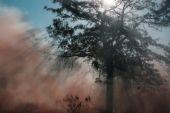 Smokey Rays — Stock Photo
