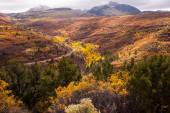 Manti-La Sal National Forest — Stock Photo