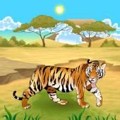 African landscape with tiger. — Stockvektor