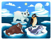 Polar animals on the ice — Stock Vector