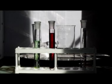 Tubes with liquid. Lab. Experiments — Stock Video