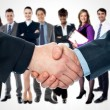 Shaking hands and business team — Stock Photo #54048691