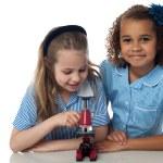 School girls posing with a microscope — Stock Photo #81621592