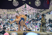 Two sumo fighters — Stock Photo