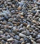 Pequenas pedras redondas — Fotografia Stock