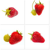Strawberry. Fruits on white. Collection — Stock Photo