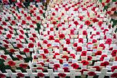Remembrance day display in Westminster Abbey — Stock Photo