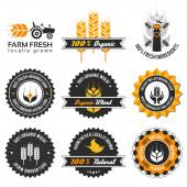 Wheat production label set — Stock Vector