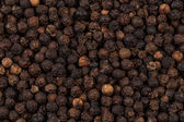 Black pepper zoomed in on — Stock Photo