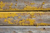 Old wooden painted and chipping paint. — Stock Photo