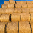 Piled hay bales on a field against blue sky — Stock Photo #78786130
