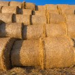 Piled hay bales on a field against blue sky — Stock Photo #78788060
