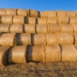 Piled hay bales on a field against blue sky — Stock Photo #80017960