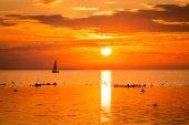 Segelfartyg yachts i havet nära kusten i tallinn — Stockfoto