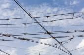Líneas de Trolley trolebuses electricidad cable — Foto de Stock