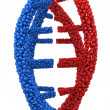 Red and Blue DNA molecule closeup — Stock Photo #69052191