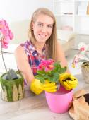 Planting colorfull flower in a flowerpot — Stock Photo