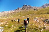 Gruppe der Wanderer in den Bergen — Stockfoto