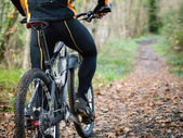 Cyclist standing in front of a path of the forest  — Stock Photo