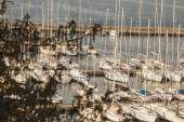 Muggia,pier and boats — Stock Photo