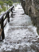 Torrent thundering down a wooden staircase along rocks. — Stock Photo