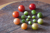 Cherry tomatoes of different ripeness, life cycle — Stock Photo