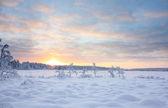 Sunset over snowy lake — Stock Photo
