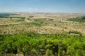 Puglia, landscape from Castel del Monte — Foto Stock