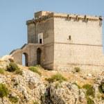 Puglia, Italy, old tower at Porto Selvaggio — Stock Photo #68995809