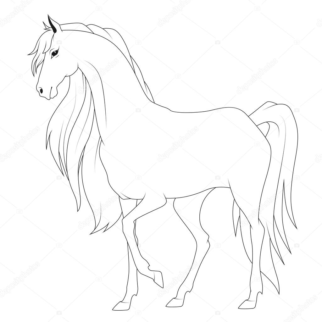 Stock Illustration Coloring Book Horse on 7352