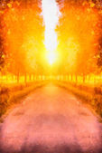Digital structure of painting. Sunny autumn alley — Stock Photo
