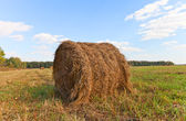 Big hay roll on mowed field — Stock Photo