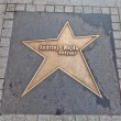 Star for Andrzej Wajda in Lodz, Poland — Stock Photo #60669493