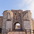 Saint Jean Gate (XIII c.)  in Provins France. UNESCO site — Stock Photo #70596189