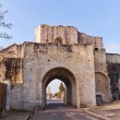 Saint Jean Gate (XIII c.)  in Provins France. UNESCO site — Stock Photo #70596195
