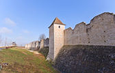 Medieval ramparts (XIII c.) in Provins France. UNESCO site  — Stock Photo