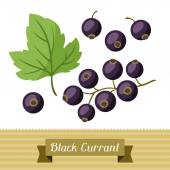 Set of various stylized black currants. — Stock Vector